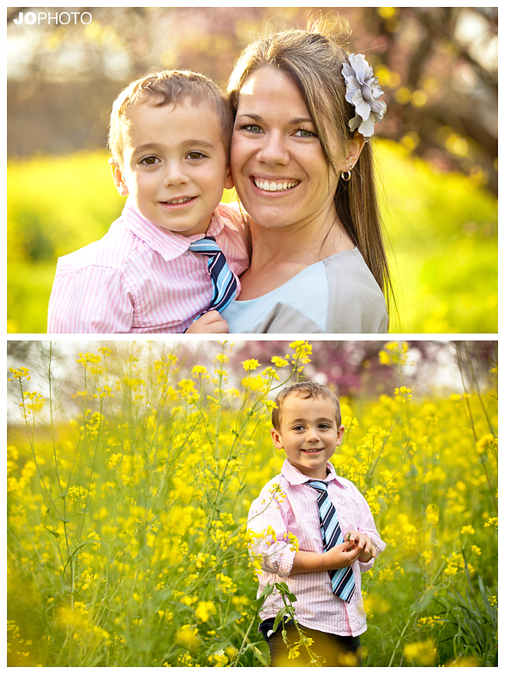 family photographers in knoxville
