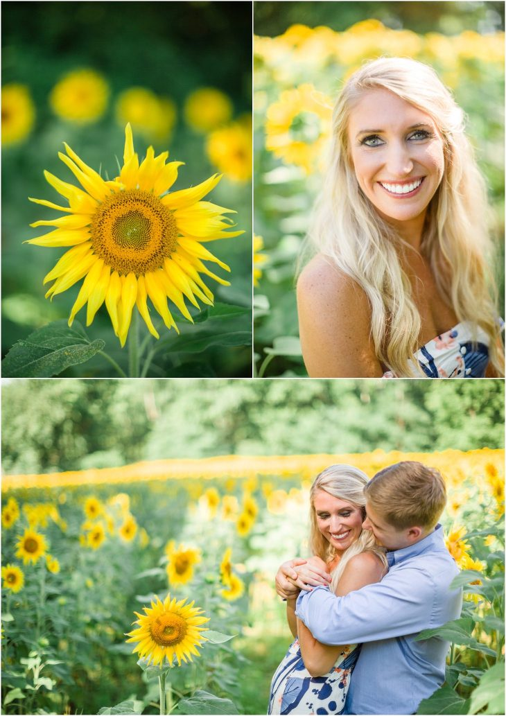 knoxville sunflower field engagement pictures