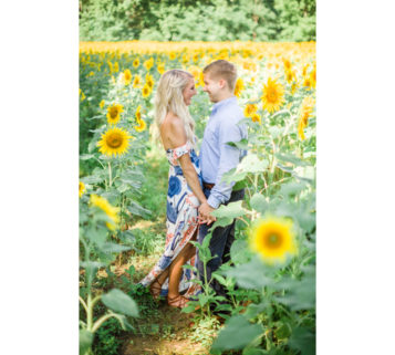 sunflower field engagement photos knoxville tn