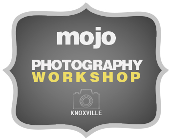 MoJo Wedding Photography Workshop