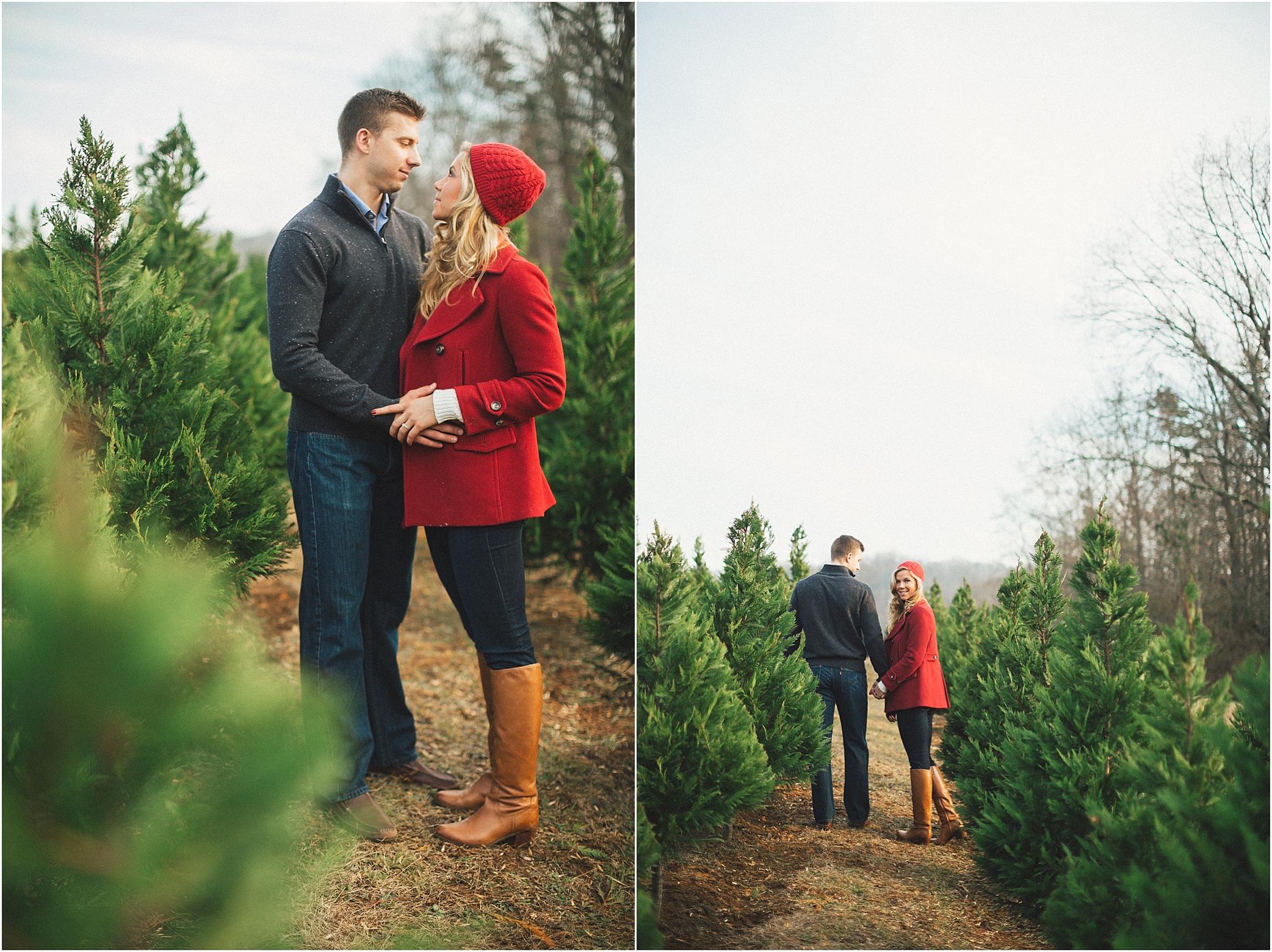 christmas tree farm tn - Bluebird Christmas Tree Farm