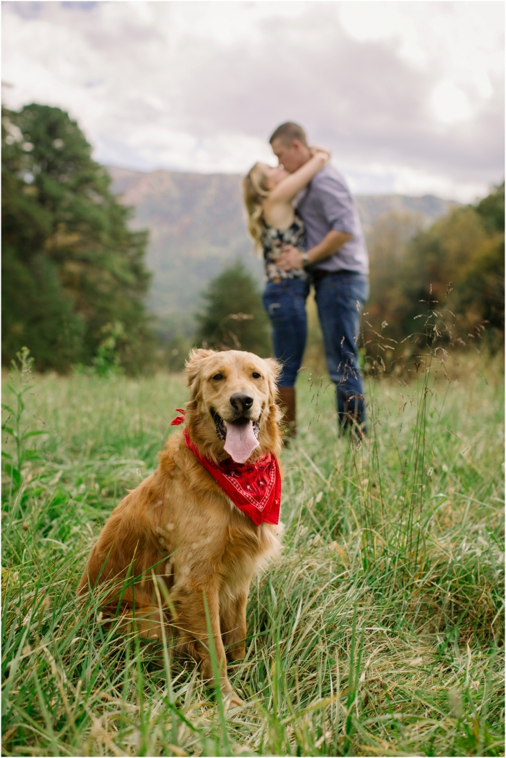 dog engagement photos
