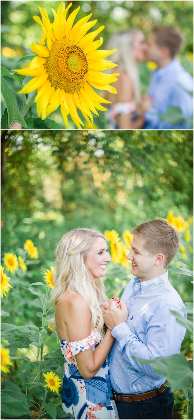 knoxville sunflower field engagement photographer